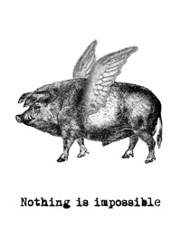 Nothing is impossible - Gris