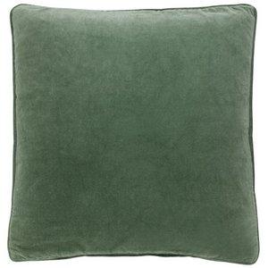 Greygreen 50