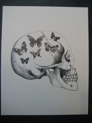 Skull with butterflies 20x25