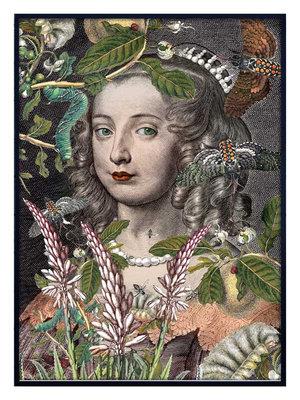 Queen Fleur 70x100