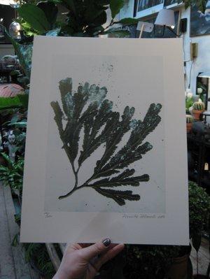 Seaweed Sea green 30x40