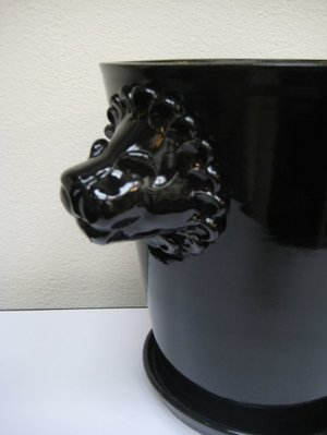 Lejonkruka - Svart blank