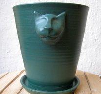 Kattkruka Flaskgrön Matt