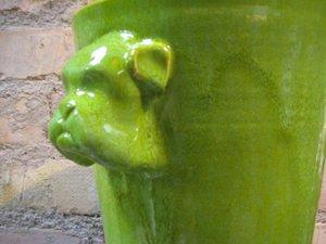 Boxerkruka - Ljusgrön