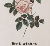 Best wishes (rose)