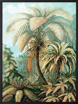 Palm blå bakgrund 30x40